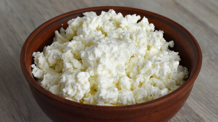 Can Dogs Eat Cottage Cheese